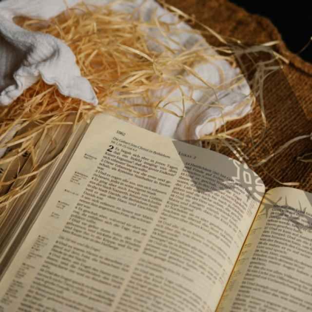 bible book business christ